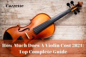 How Much Does A Violin Cost 2021 Top Complete Guide